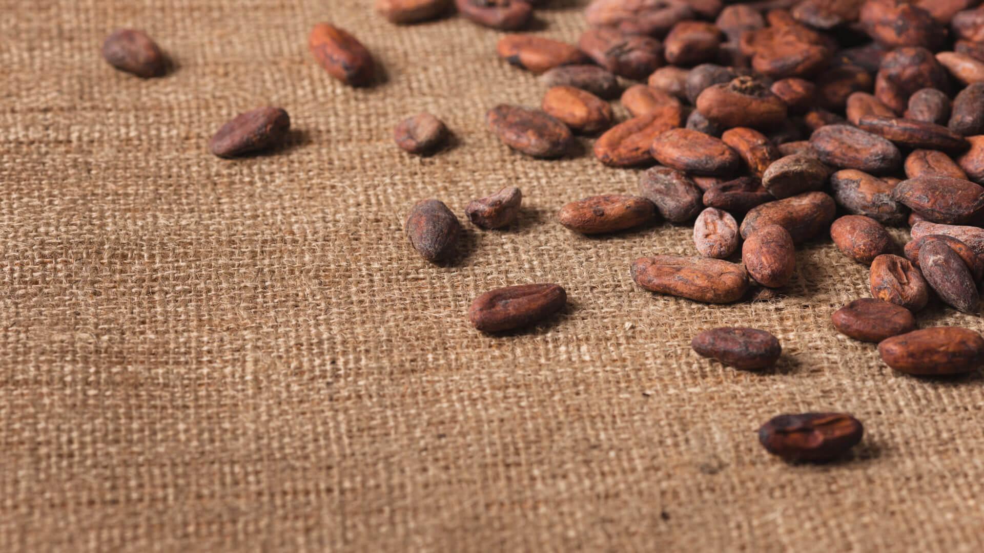 砂糖不使用・糖質カット 無添加チョコレート グランポワール